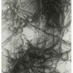 Hidden Life I, 2010, 52 x 20 inches, 133 x 51 cm, graphite on rives lightweight