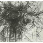 Natural Details, 2008, 26 x 40 inches, 66 x 101 cm, graphite on rives cover